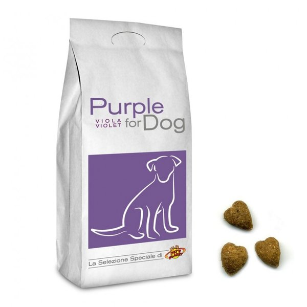 Purple For Dog